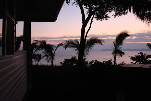 Hilo, Hawaii. Photo by Sheri Cifaldi-Morrill   Whole Circle Studio