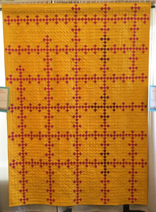 Ann Arbor Modern Quilt Guild | QuiltCon 2018 | Irish Chain | quilt | modern | modern traditionalism